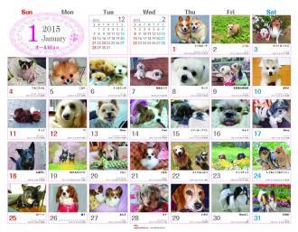 みんなで作る参加型カレンダー!「365カレンダー」