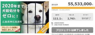 犬の殺処分ゼロを目指すガバメントクラウドファンディングが5,000万円の資金調達達成!